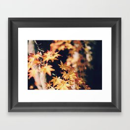 autumn reds 2 Framed Art Print