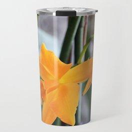 Longwood Gardens Orchid Extravaganza 71 Travel Mug