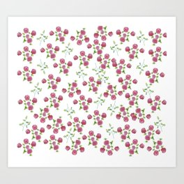 Watercolor roses on white backgroung Art Print