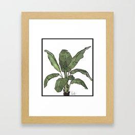 I'm Bananas Framed Art Print