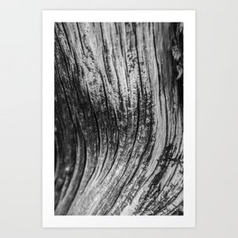 Bristlcone Waves Art Print