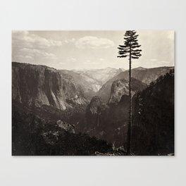 Yosemite Valley, California Canvas Print