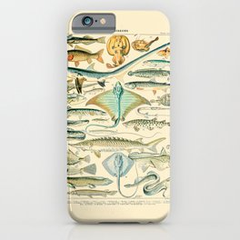 Vintage Fishing Diagram // Poissons II by Adolphe Millot 19th Century Science Textbook Artwork iPhone Case