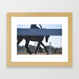 Horse Park 131 Framed Art Print
