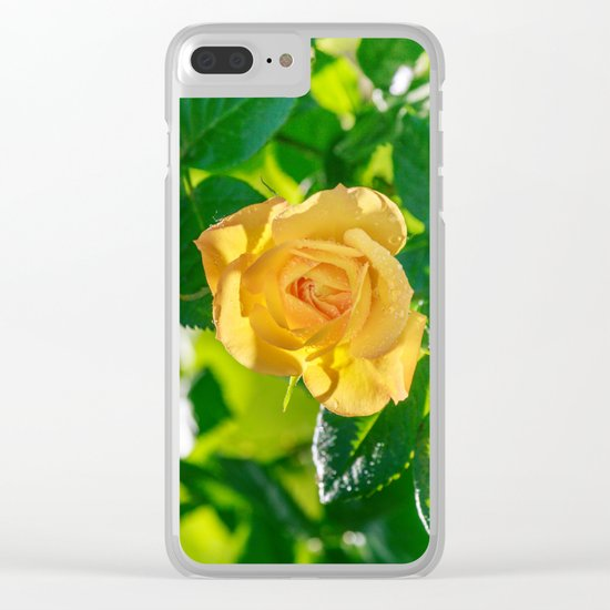 Gold rose Clear iPhone Case