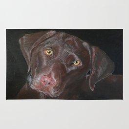 Inquisitive Chocolate Labrador Rug