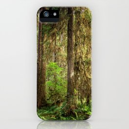 Forest Trees iPhone Case