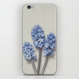 Light Blue Hyacinths iPhone Skin