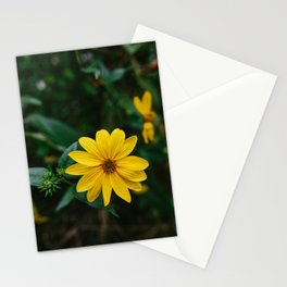 Flowers XIV Stationery Cards