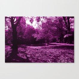 Pink Tree's Canvas Print