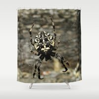 spider Shower Curtains featuring Spider by moo2me