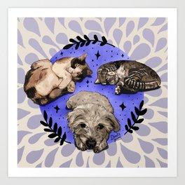 Settle Pets! Art Print