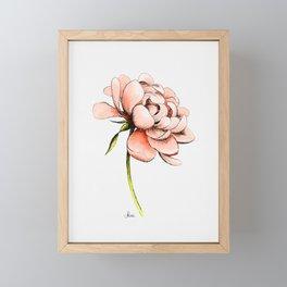Coral Pink Peony Framed Mini Art Print