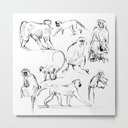 Monkey Green Metal Print