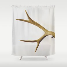the naturalist 01 Shower Curtain