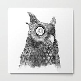 Owl Nr.5 Metal Print