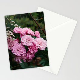 Flowers VIII: Ohio Stationery Cards