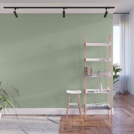 Solid Color Pale Pastel Green Pairs to Pantone 14-0114 TCX Celadon Green Wall Mural