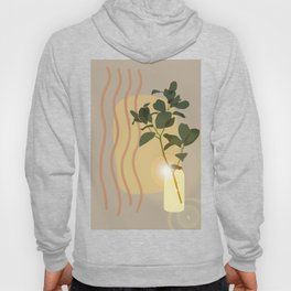 Green Leafed Plant Inside Vase, Sun Reflection Scene Hoody