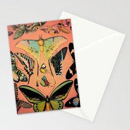 Butterfly Study Stationery Cards