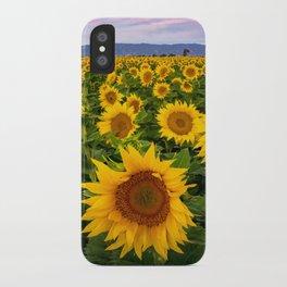 Field of Sunflowers, California iPhone Case