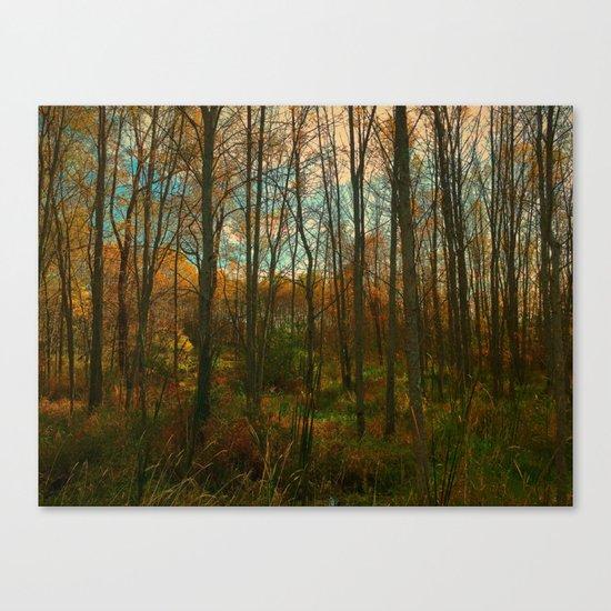 Fall Encroachment Canvas Print