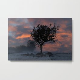 Frosty Sunrise At Chasewater Country Park Metal Print
