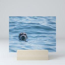 Black Seal Bobbing In Calm Blue Ocean Mini Art Print