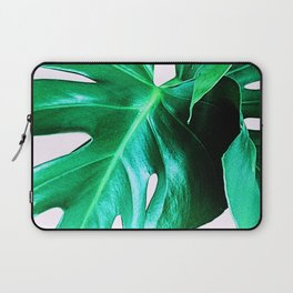 Cheese Plant Leaves Laptop Sleeve
