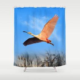 Morning Flight 1 Shower Curtain
