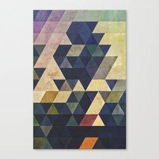 plyss Canvas Print