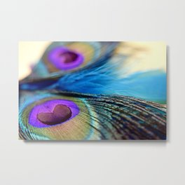 """Peacock Feathers"" Metal Print"