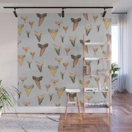 Shark Teeth Study - Grey Wall Mural
