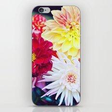 Darling Dahlias I iPhone & iPod Skin