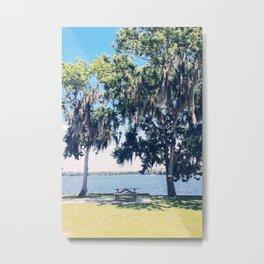 lake living Metal Print