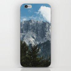 Waxenstein #2 iPhone & iPod Skin