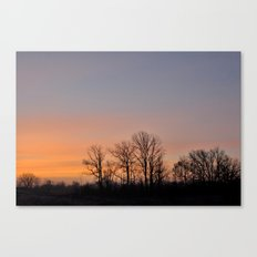 Bare Trees Canvas Print