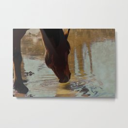 The Watering Hole  - Drinking Percheron Horse Metal Print