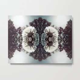 Snowflake Wishes Metal Print