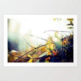 Stick Art Print