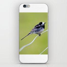 Bird on a wire iPhone Skin