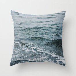 Arctic Waters Throw Pillow
