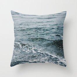 Arctic Waters Throw Pillow