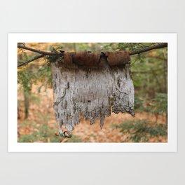 Little Clothesline (Photo) Art Print