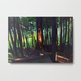 The Summer Lights of British Columbia Metal Print