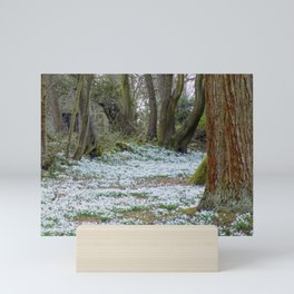 Snowdrops Mini Art Print
