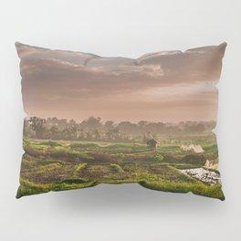 Rice fields Pillow Sham