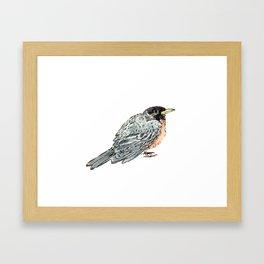 Grey Watercolor Bird Framed Art Print
