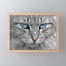 Cat Look Framed Mini Art Print