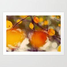 Nutmeg Art Print